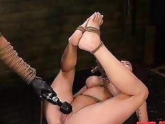 master dominates milf's pussy