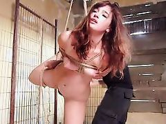 slutty jodi got tied and fucked