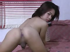 Ladyboy Porn Tubes